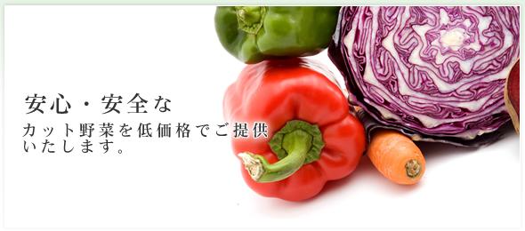 安心・安全なカット野菜を低価格でご提供いたします。