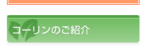 コーリンのご紹介 カット野菜 大阪 業務用